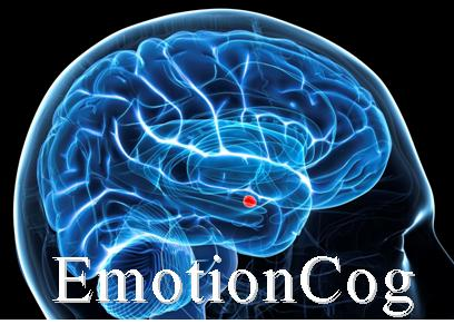 EmotionCog